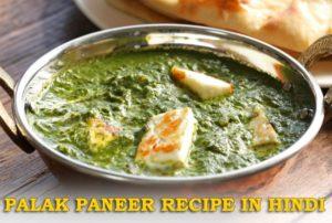 Palak Paneer Recipe in Hindi : Paneer Recipes