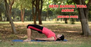 Setu Bandha Yoga Aasan (Bridge Pose)