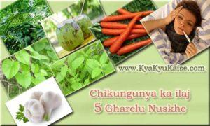 Chikungunya ka ilaj ke Gharelu Nuskhe aur Upay Hindi Mein