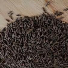 black cumins seeds in hindi